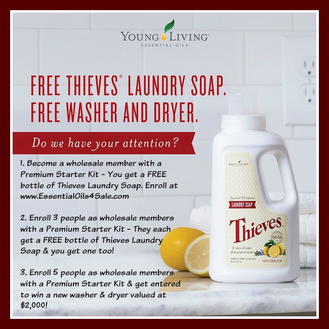 Do you want a free bottle of thieves laundry soap in september do septemberenrollment solutioingenieria Image collections