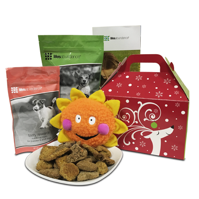 Holiday Dog Gift Basket www.HealthyPetPeeps.com