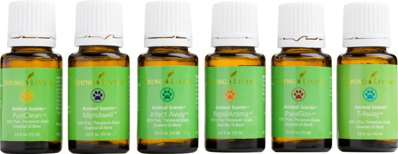 Paragize Essential Oil For Dogs Cats And Small Animals