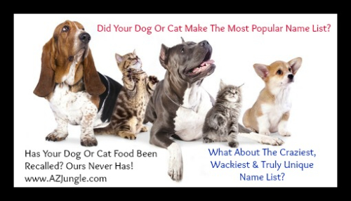 Most Popular And Wackiest Dog And Cat Names www.AZJungle.com