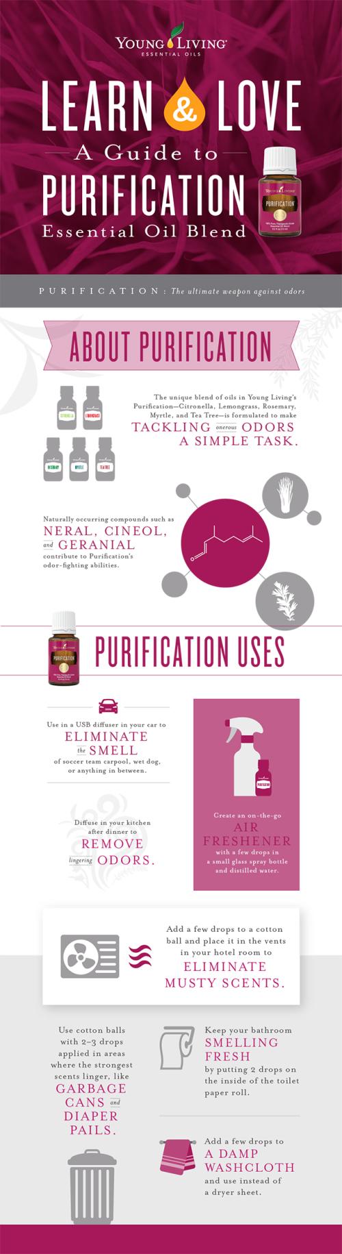 A-guide-to-Purification-essential-oil-blend www.EssentialOils4Sale.com
