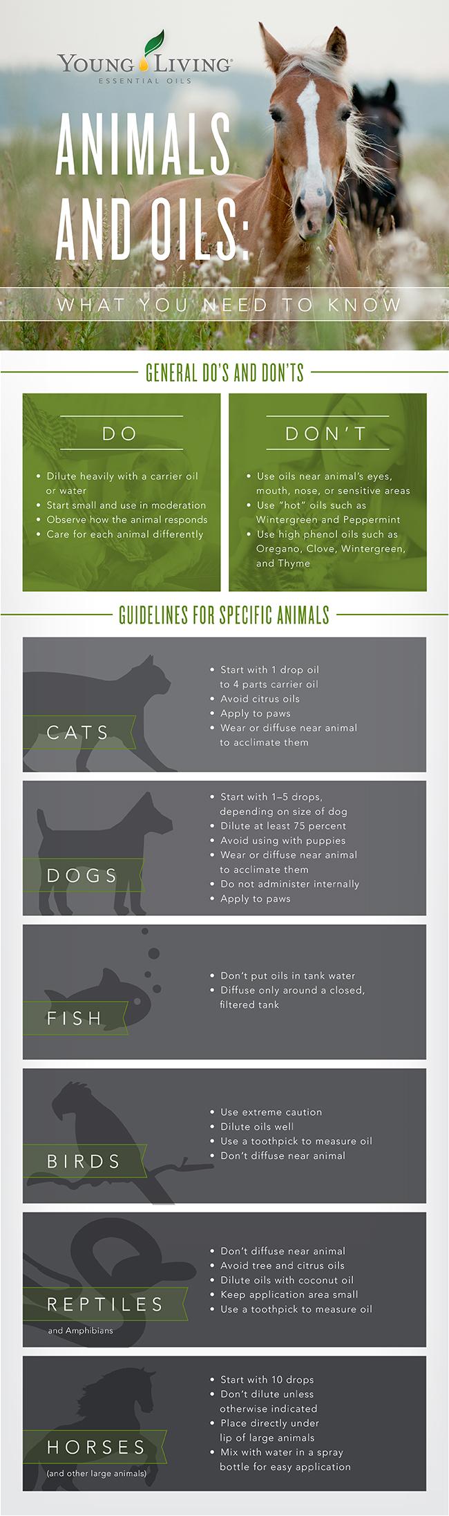 Animals And Essential Oils www.EssentialOils4Sale.com