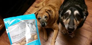 Gourmet Dental Treats For Dogs www.HealthyPetPeeps.com