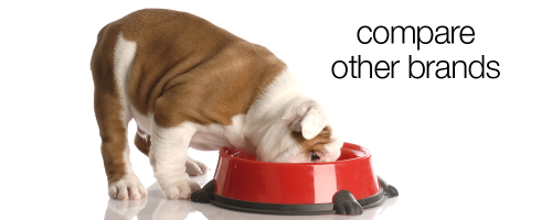 Compare your dog food to Life's Abundance www.HealthyPetPeeps.com