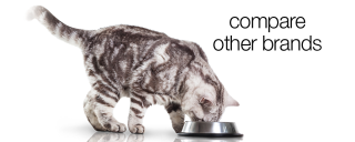 Compare Cat Foods To Life's Abundance www.HealthyPetPeeps.com