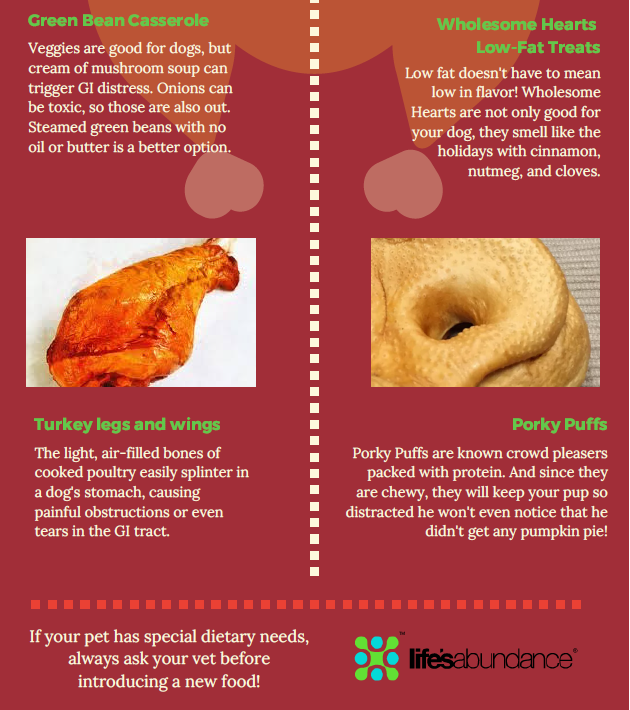 Thanksgiving For Your Pets www.HealthyPetPeeps.com