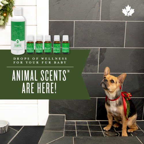 Young Living Animal Scents Essential Oils in Canada www.EssentialOils4Sale.com