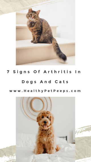 7 Signs Of Arthritis In Cats And Dogs www.HealthyPetPeeps.com