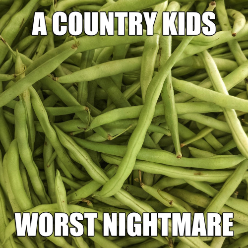 Country kids worst nightmare www.HealthyEasyFood.com