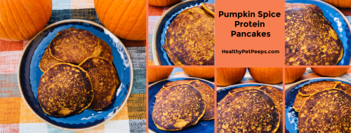 Recipe for Pumpkin Spice Protein Pancakes www.HealthyPetPeeps.com