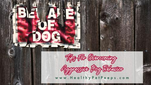 Tips for overcoming aggressive dog behavior www.HealthyPetPeeps.com