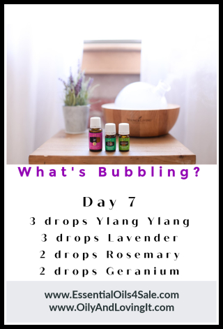 Whats Bubbling Day 7 from www.EssentialOils4Sale.com