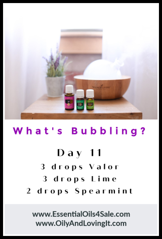 Whats Bubbling Day 11 from www.EssentialOils4Sale.com