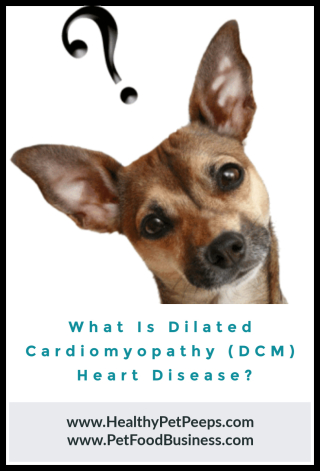 What Is Dilated Cardiomyopathy (DCM) Heart Disease www.HealthyPetPeeps.com