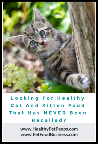 Looking for a cat or kitten food that's never been recalled www.HealthyPetPeeps.com