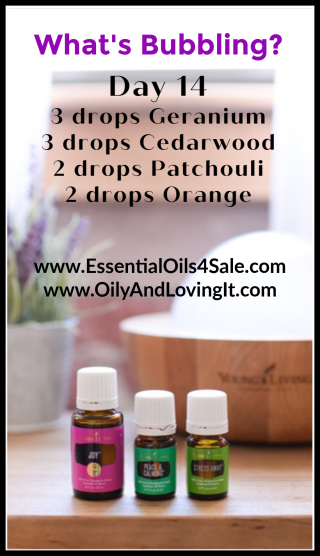 Day 14 What's Bubbling from www.EssentialOils4Sale.com