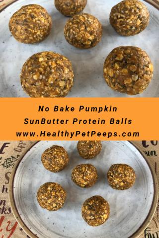 No Bake Pumpkin SunButter Protein Balls www.HealthyPetPeeps.com