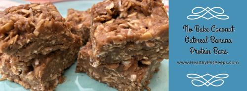 No Bake Coconut Oatmeal Banana Protein Bars Recipe www.HealthyPetPeeps.com