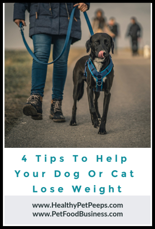 4 Tips To Help Your Pet Lose Weight - www.HealthyPetPeeps.com