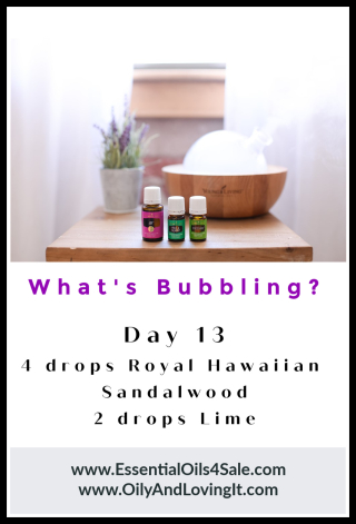 Whats Bubbling Day 13 from www.EssentialOils4Sale.com