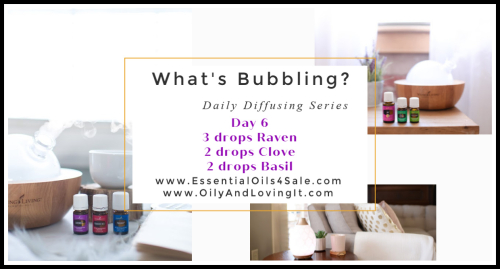 Whats Bubbling Day 6 www.EssentialOils4Sale.com