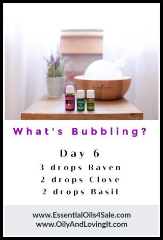 Whats Bubbling Day 6 from www.EssentialOils4Sale.com