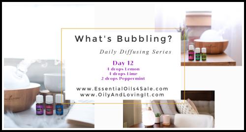 Whats Bubbling Day 12 www.EssentialOils4Sale.com
