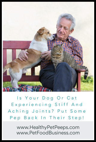 Is Your Dog Or Cat Experiencing Stiff And Aching Joints Put Some Pep Back In Their Step www.HealthyPetPeeps.com