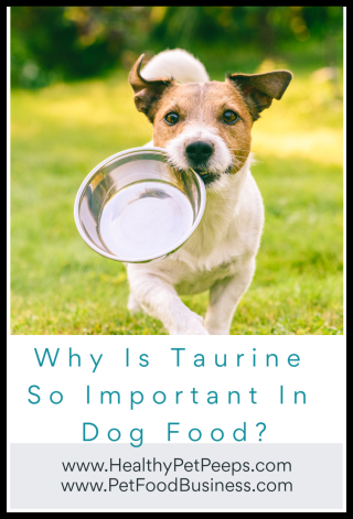 Why Is Taurine So Important In Dog Food - www.HealthyPetPeeps.com