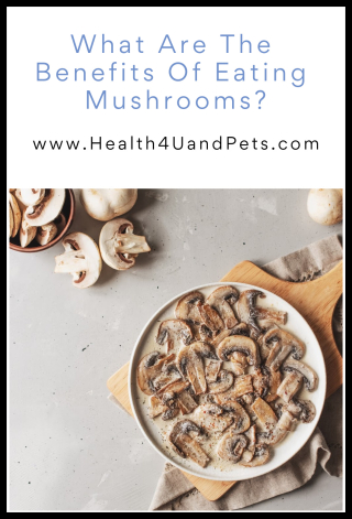 What Are The Benefits Of Eating Mushrooms - www.Health4UandPets.com