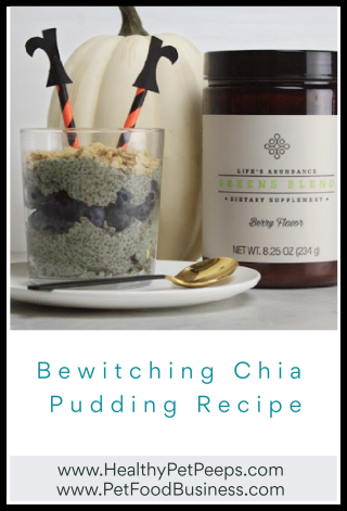 Bewitching Chia Pudding Recipe - www.HealthyPetPeeps.com