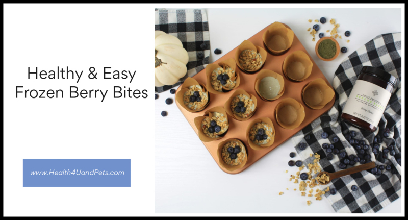Healthy And Easy Frozen Berry Bites www.Health4UandPets.com