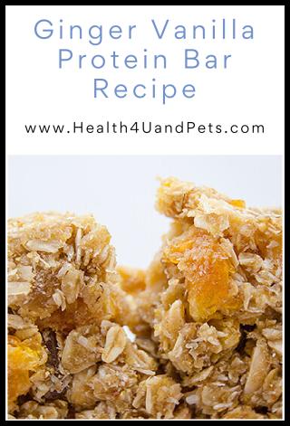Ginger Vanilla Protein Bar Recipe - www.Health4UandPets.com