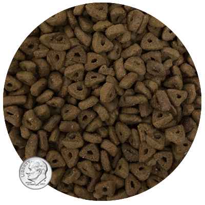 Life's Abundance All Life Stage Cat Food Kibble Size www.HealthyPetPeeps.com