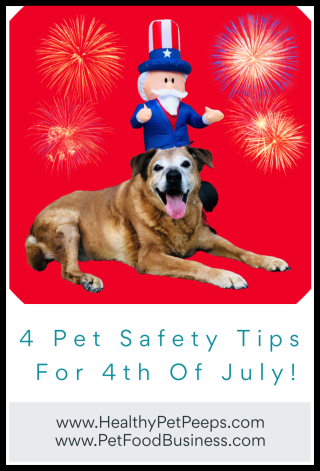 4 Pet Safety Tips For The 4th Of July -- www.HealthyPetPeeps.com