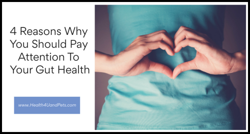 4 Reasons Why You Should Pay Attention To Your Gut Health www.Health4UandPets.com