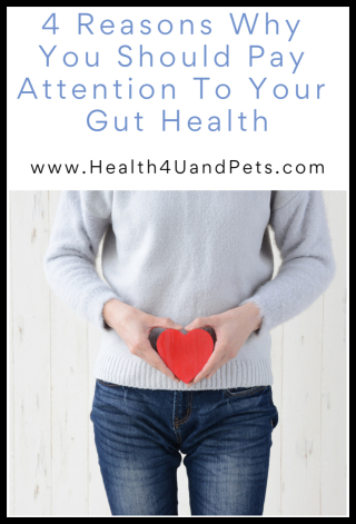 4 Reasons Why You Should Pay Attention To Your Gut Health -- www.Health4UandPets.com
