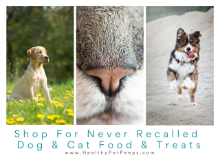 Shop for healthy  never recalled dog and cats foods www.HealthyPetPeeps.com