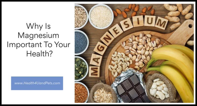 Why Is Magnesium Important To Your Health www.Health4UandPets.com