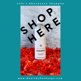 Life's Abundance Shampoo Shop Here www.HealthyPetPeeps.com