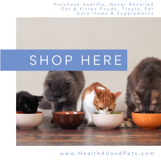 Purchase Healthy Products For Your Cat and Kitten www.Health4UandPets.com