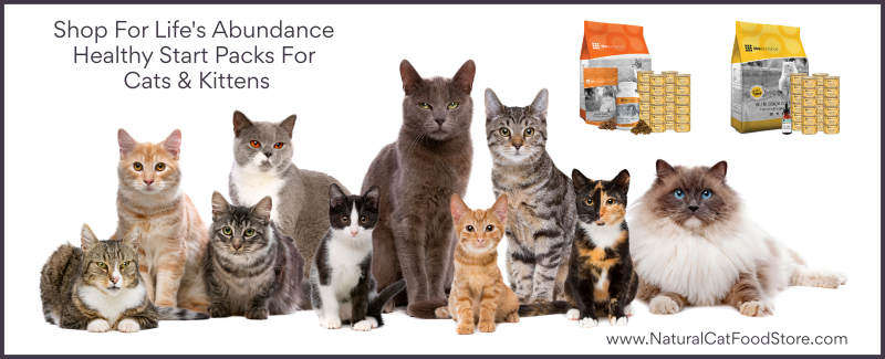 Shop For Life's Abundance Healthy Start Packs For Cats & Kittens www.NaturalCatFoodStore.com