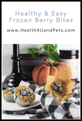 Healthy And Easy Frozen Berry Bites - www.Health4UandPets.com