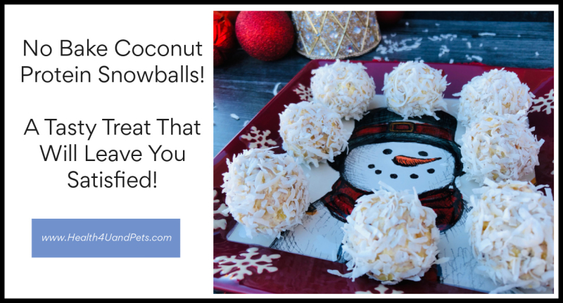 No Bake Coconut Protein Snowballs Recipe www.Health4UandPets.com