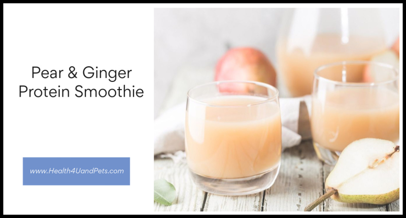 Pear & Ginger Protein Smoothie Health4UandPets.com