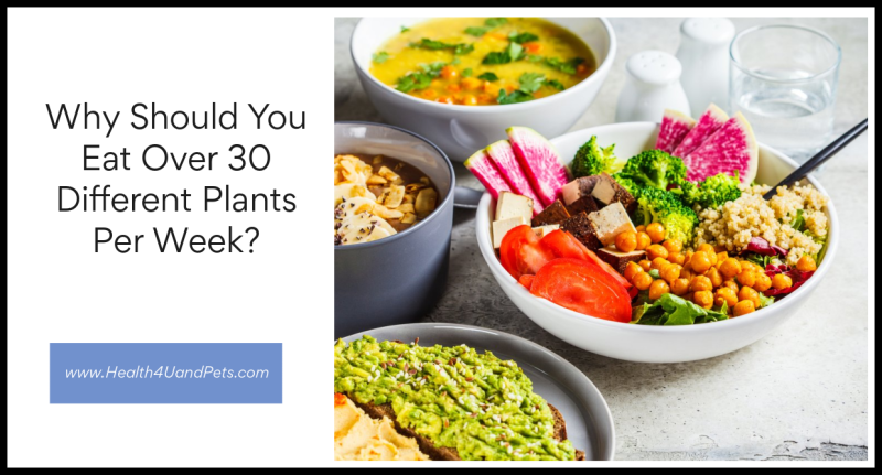 Why Should You Eat Over 30 Different Plants Per Week www.Health4UandPets.com