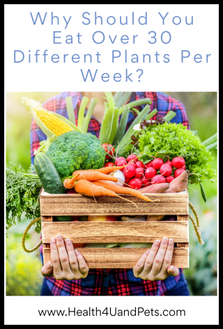Why Should You Eat Over 30 Different Plants Per Week - www.Health4UandPets.com