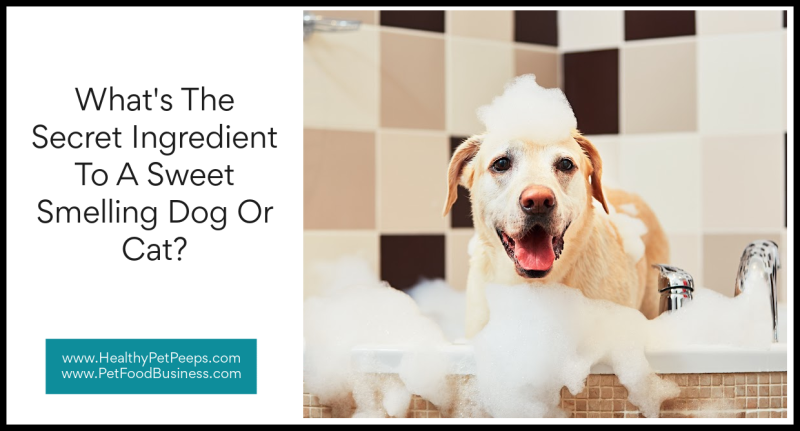What's The Secret Ingredient To A Sweet Smelling Dog Or Cat www.HealthyPetPeeps.com