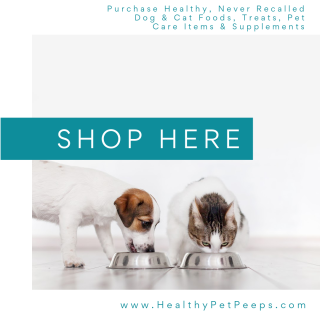 Purchase Healthy Products For Your Dog And Cat Food